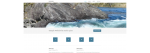 nordic-pine: your virtual assistant - WordPress website